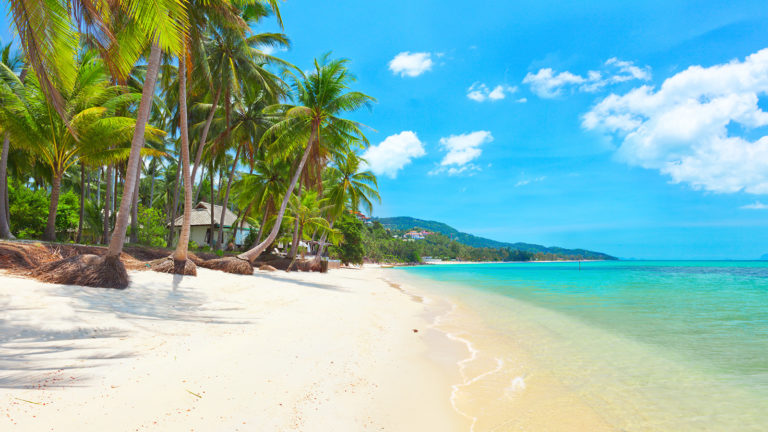 KOH SAMUI – TOURISME : L'île de Samui fait son (maigre) bilan de l'opération « bac à sable »